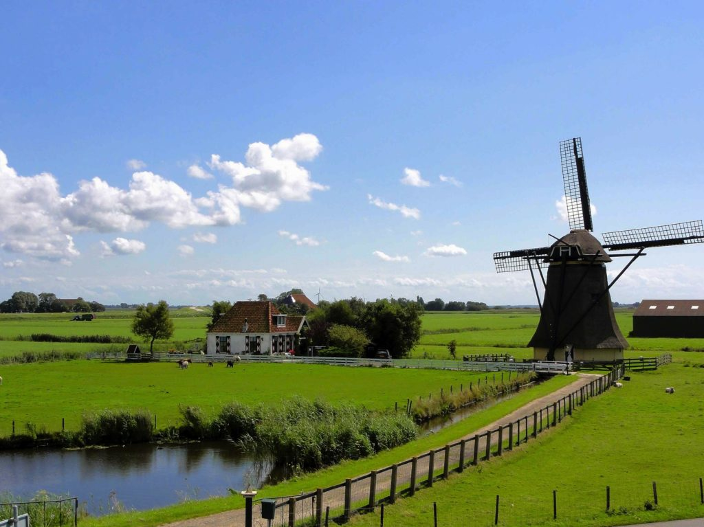 AIMS NETHERLANDS