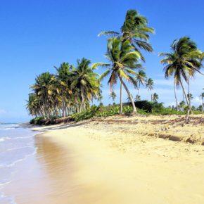 AIMS DOMINICAN REPUBLIC