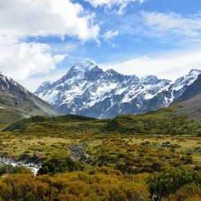AIMS NEW ZEALAND
