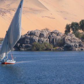 AIMS EGYPT
