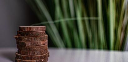 Sustainable profitability or profitable sustainability?